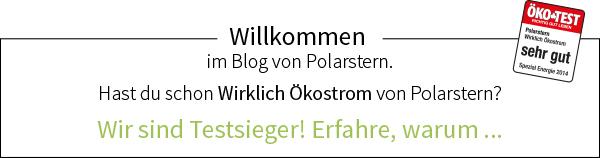 Blog von Polarstern Energie