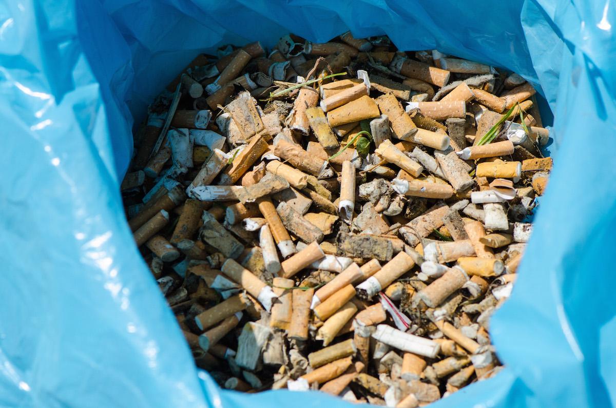 Eklig und giftig: Zigarettenstummel am Isarufer