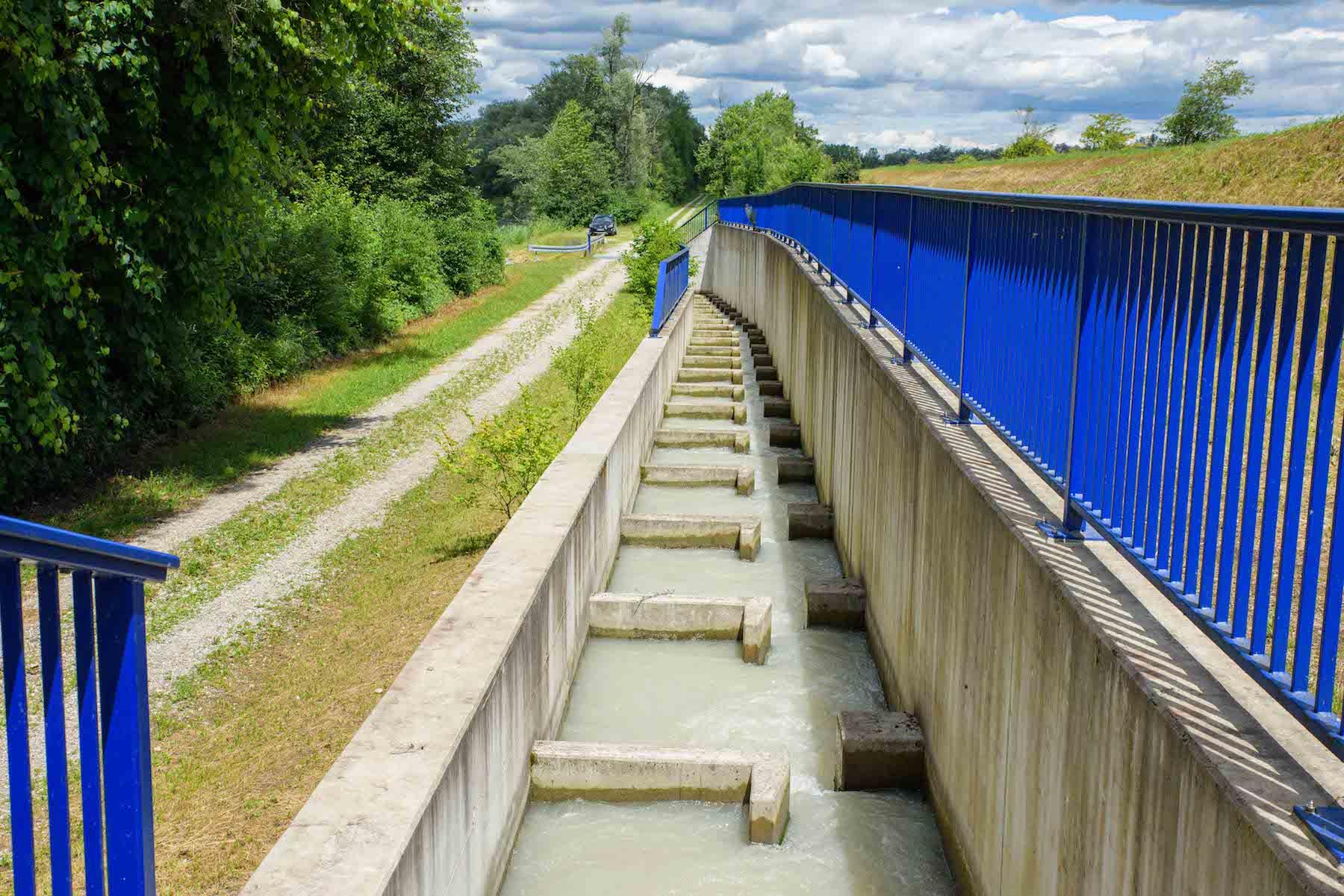 Die Fischtreppen am Wasserkraftwerk Feldkirchen machen es möglich dass Fische das Wasserkraftwerk umschwimmen können.