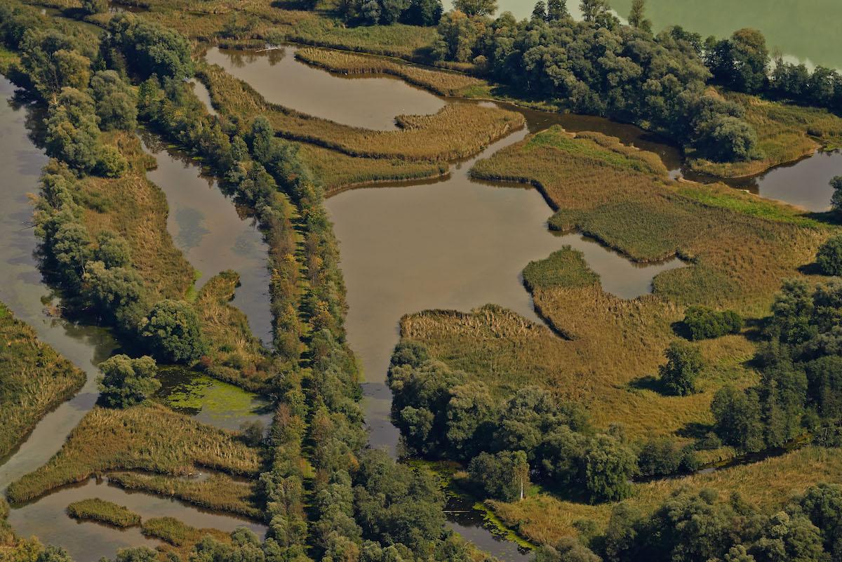 Fischumleitung am Wasserkraftwerk in Feldkirchen